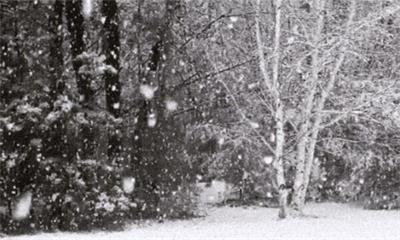 内蒙古30日起 再迎雨雪大风降温环捷建议做好保暖